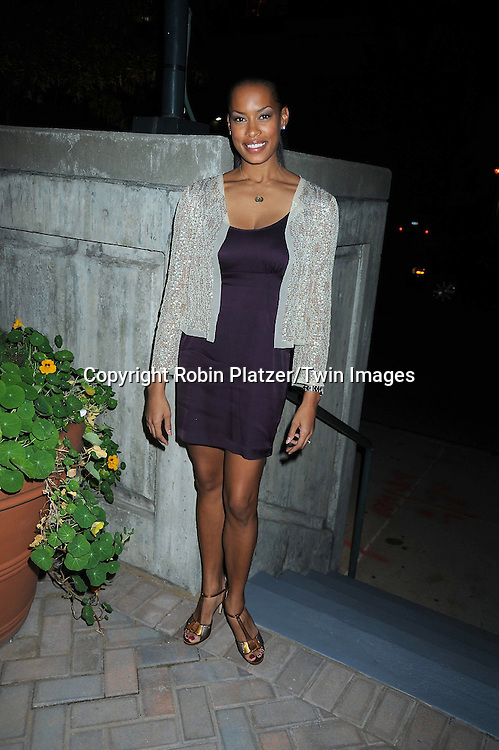 Kearran Giovanniattending ABC Casino Night on October 28, 2010 at Guastavinos in New York City. .