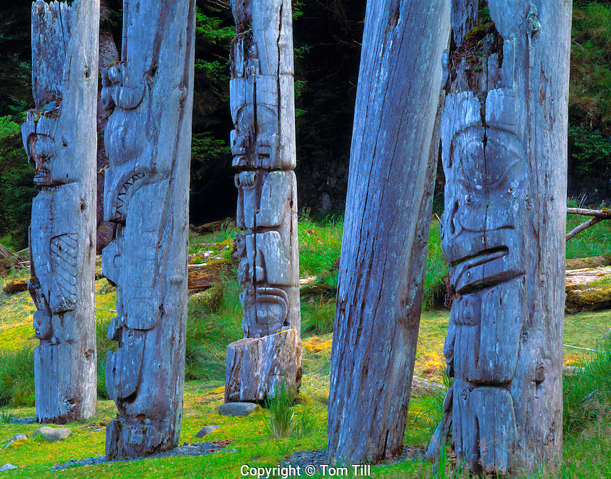 Ancient Haida Totems, South Moresby National Park, Queen Charlotte Islands, British Columbia, Canada