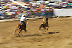 A rider tosses his lasso at a horse during the BIg Loop Competition, Jordan Valley Big Loop Rodeo,
