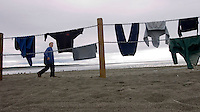 Nick Prokoshev walks past clothing hanging to dry on new fencing the city of Kenai installed in 2009 to protect beach dune grass from the sockeye salmon dipnet fishers who show up every July at the Kenai River's mouth in Kenai, Alaska.