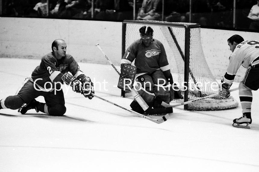 Seals vs Detroit RedWings 1971, Wings goalie Joe Daley blocks shot by Seals Bill Hickey, Wings #2 Gary <br />Bergman. (photo by Ron Riesterer)