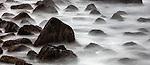 Kelp covered rocks in tidal waters, Vik, Iceland