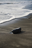 Rock and tide, Washington, USA