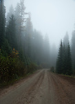 Traveling through fog in the Selkirk mountains in northern Idhao