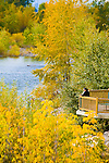 Autumn color at Brennan's Wave overlook in Missoula, Montan