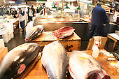 Mar 4, 2006; Tokyo, JPN; Tsukiji.Fresh tuna waiting to be cut at the Tsukiji Fish Market...Photo credit: Darrell Miho