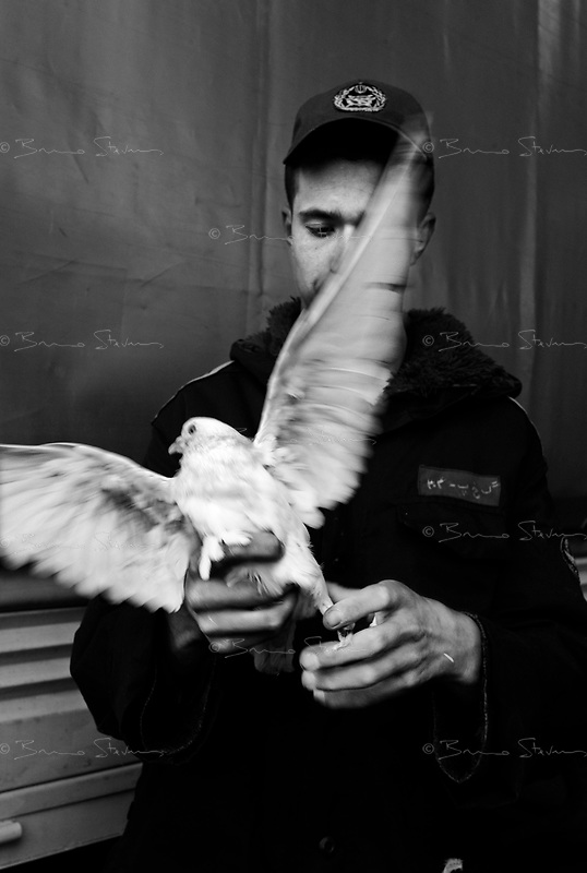 "Teheran, Iran, March 31, 2007.A policeman with with one of dozen doves released during the ""Islamic Republic Day"" party organized by the municipality in Enqelab square and adjacent avenue. For most people present it was simply a celebration of the coming of the spring during the Iranian New Year (Norouz) holidays.."