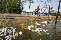 Young men cycle past fish killed by the cyclone. Thousands of people were displaced in Shyamnagar Upazila, Satkhira district after Cyclone Aila struck Bangladesh on 25/05/2009, triggering tidal surges and floods..
