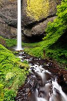 Latourell Falls falling over basalt cliff, Columbia River Gorge National Scenic Area, Oregon, USA