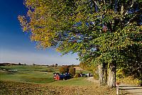 Jenne farm, S. Woodstock, VT