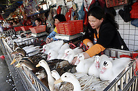 China Agricultural Market