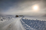 Idaho, North Central, Moscow. Sun and fog on a snow covered Palouse.