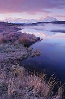 Mt Denali, (Denali) North America's highest mountain, morning alpenglow, fog over wonder lake reflection, frosted autumn grasses Denali National Park, Alaska