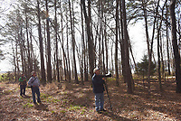 NWA Democrat-Gazette/FLIP PUTTHOFF <br />Neal (from left), Oakley and Stanfill explore a pine grove March 23 2017 at the nursery pond.
