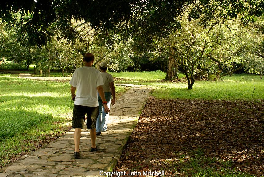 Tourists walking along a path at Lancetilla Botanical Garden, Honduras. Lancetilla Garden was established by American botanist William Popenoe in 1926.