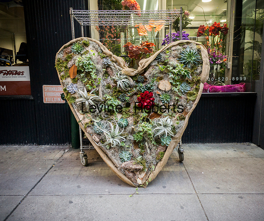 A giant Valentine's Day floral heart display made up of succulents, bromeliads, roses and other plants in front of a florist in the Chelsea neighborhood of New York on Monday, February 6, 2017.  The National Retail Foundation is reporting that Valentine's Day spending is expected to be slightly lower than last years and represents only the second dip in spending since 2010. (© Richard B. Levine)