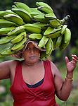 A woman carries bananas through the rain in Mizak, a small village in the south of Haiti.
