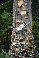Discarded Shoes nailed to Shoe Tree after hiking in Cape Scott Provincial Park, Vancouver Island, BC, British Columbia, Canada