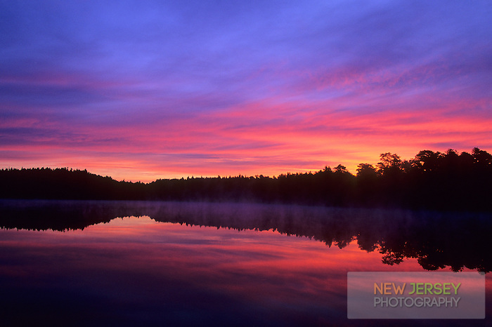 Sunrise reflecting in pond, Pine Barrens, New Jersey