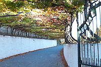 Douro Quinta do Noval - stock photo samples