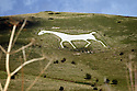 'Wiltshire white horses' for Best of British magazine'