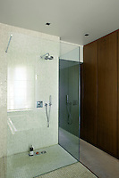 A glass-enclosed walk-in shower against one wall of the bathroom is lined with mosaic tiles