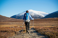 Female hiker hiking north on Kungsleden trail with snow covered Keron + Giron (1543m) mountain peak in distance, Lappland, Sweden