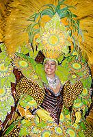 Dancer taking part in a traditional Rio Carnival in Rio de Janeiro, Brazil