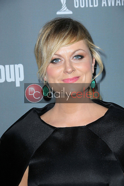 Amy Poehler<br />