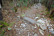May 2015 - Water bar that appears to serve no purpose along the Mt Tecumseh Trail in Waterville Valley, New Hampshire. Trail stewardship groups suggest only needed stone structures that benefit the trail should be built along a trail. This drainage was built in 2012.