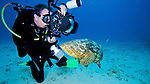 Photographer and Goliath Grouper, Key Largo, Florida