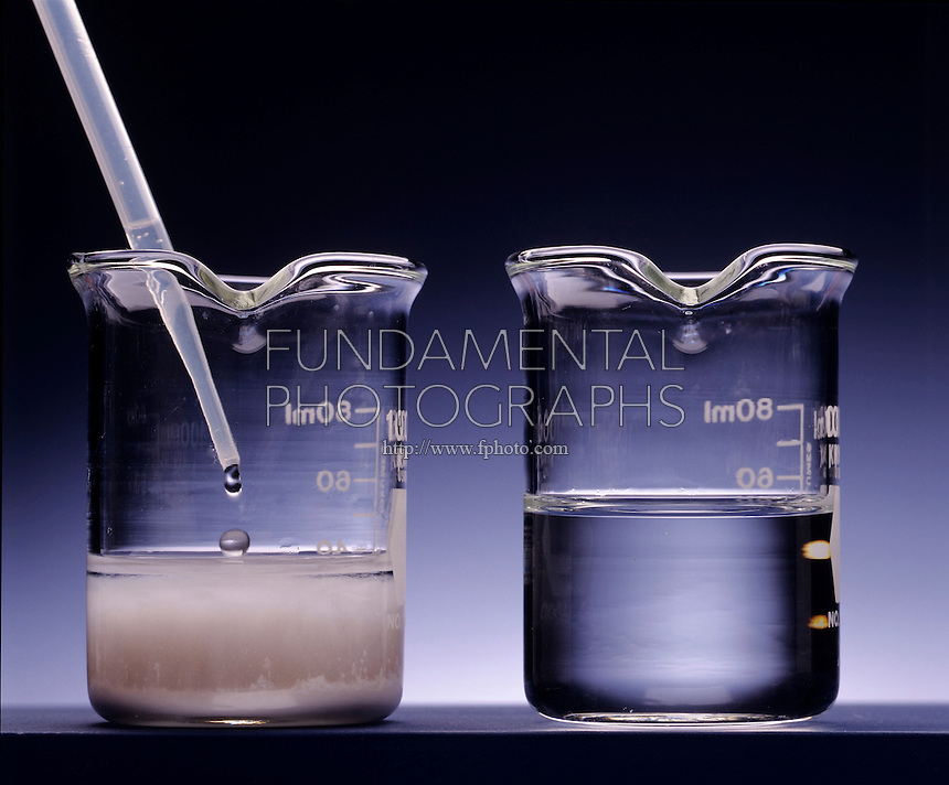 DISSOLUTION: SILVER CHLORIDE BY AMMONIA<br /> (Variations Available)<br /> Formation Of Complex Ion [Ag(Nh3)2]+(aq)<br /> (Left) Ammonium hydroxide is added to water containing silver chloride precipitate. (Right) The silver chloride, soluble in NH3(aq), dissolves to form the complex ion [Ag(NH3)2]+(aq).
