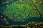 Nisqually River Delta, Washington