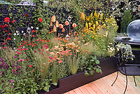 Hot color themed garden in red, orange, yellow