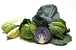 Cabbage still life.
