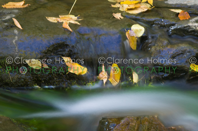 Laurel Creek Cascades, Great Smoky Mountains National Park