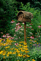 Unique birdhouse in black eyed susans and purple coneflowers