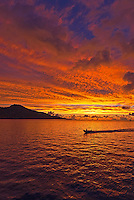 Chuuk, South Pacific Traditional & Culture, Birds, Weather