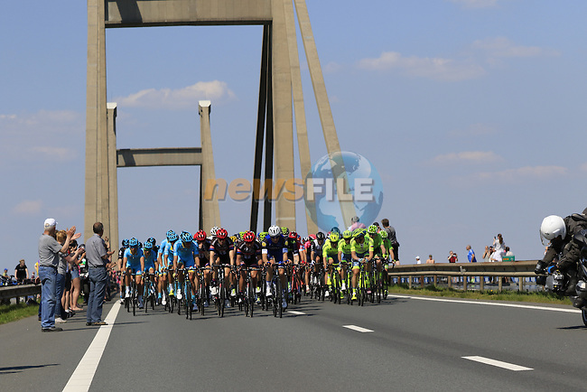 The peloton cross Prince Willem Alexander Bridge over the River Waal during Stage 2 of the 2016 Giro d'Italia running 190km from Arnhem to Nijmegen, The Nethrerlands. 7th May 2016.<br /> Picture: Eoin Clarke | Newsfile<br /> <br /> <br /> All photos usage must carry mandatory copyright credit (&copy; Newsfile | Eoin Clarke)