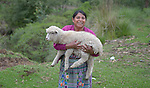 Teresa Diaz carries one of her sheep in San Luis, a small Mam-speaking Maya village in Comitancillo, Guatemala. Women in the community have worked together on several agricultural and animal raising projects with help from the Maya Mam Association for Investigation and Development (AMMID).