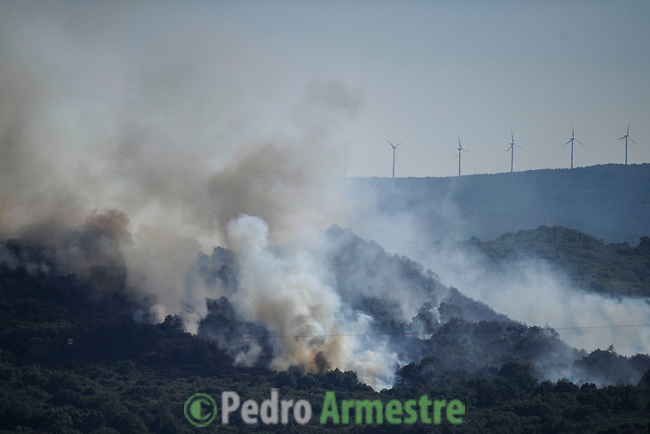 Smoke billows from a forest during a wildire in Seoane de Oleiros, near Ourense, on August 25, 2013. (c) Pedro ARMESTRE