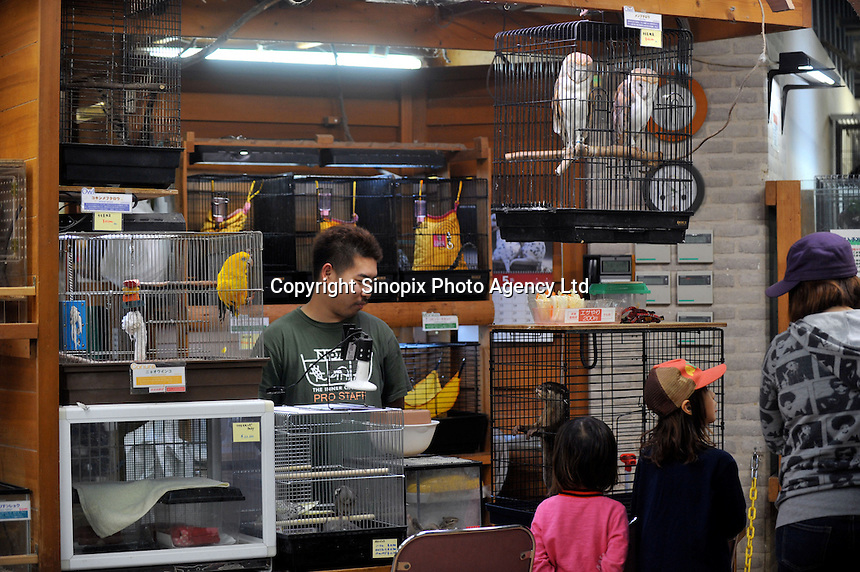 The worlds most exotic pet shop called Noah Inner City Zoo. The Noah Inner City Zoo is a pet shop that sells exotic animals. The 'zoo' claims to have more than 300 species for sale, many of which are rare and some are even endangered.