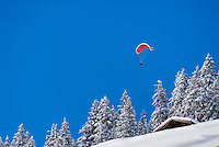 Paraglider enjoying perfect weather after winters first snowfall, Gimmelwald, Bernese Alps, Switzerland