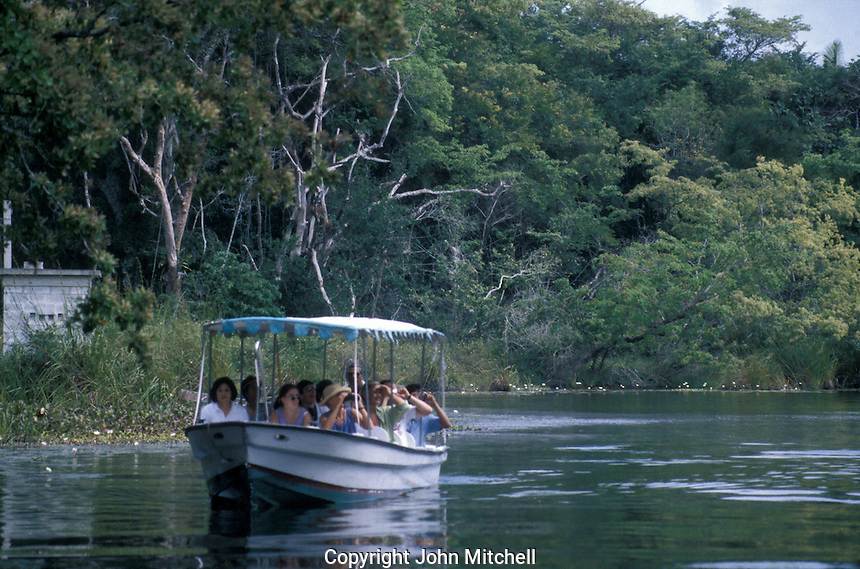 Bird watchers on a tour boat on the New River, Belize