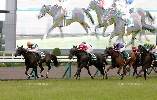 (L-R) Lilavati (Fuma Matsuwaka), Sundarbans (Hironobu Tanabe), Kokorono Ai (Norihiro Yokoyama), Hiruno Matera (Hirofumi Shii),<br /> JUNE 12, 2016 - Horse Racing :<br /> Lilavati ridden by Fuma Matsuwaka wins the Mermaid Stakes at Hanshin Racecourse in Hyogo, Japan. (Photo by Eiichi Yamane/AFLO)
