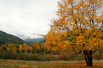 The first snows of an early winter on the Coeur D Alene Range with autumn colors as viewed from the grounds of the Cataldo mission