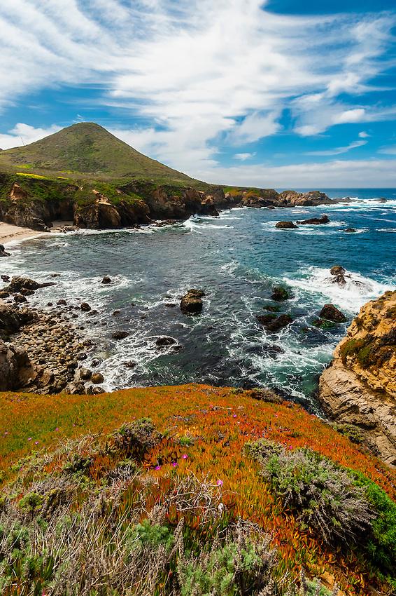 Seascape, Soberanes Point, Garrapata State Park, Monterey County, California USA