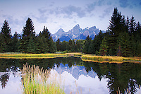 Sunrise at Shwabacker's Landing in Grand Teton National Park