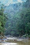 Tutoh River, Sarawak, Borneo, Malaysia