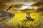 girl sitting in a cornfield